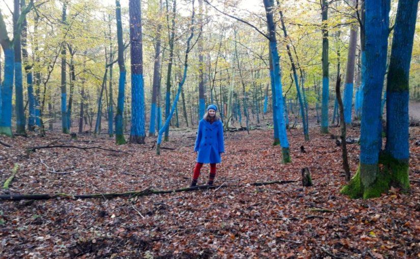 frau in blauem mantel unter blauen baeumen